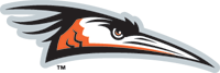 Delmarva-Shorebirds-2010