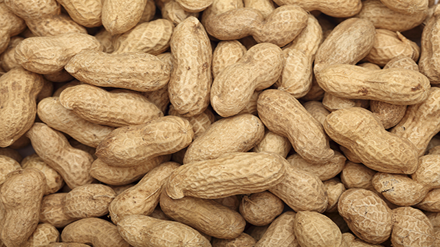 Peanuts. Close-up.